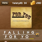 Level Variety 2 24 Falling for you