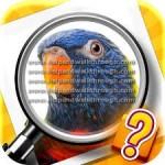 Zoom quiz 1