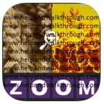 Zoom Quiz guillaume coulbaux